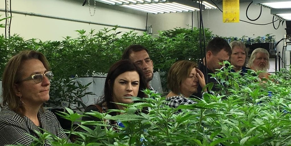 In this Jan. 31, 2017 photo, agriculture regulators from seven different states and Guam tour a Denver marijuana growing warehouse on a tour organized by the Colorado Department of Agriculture in Denver. The department is opening up its marijuana knowledge to other states and encouraging them to plan now for the possibility of regulating farmers growing a plant that violates federal law. (AP Photo/Kristen Wyatt)