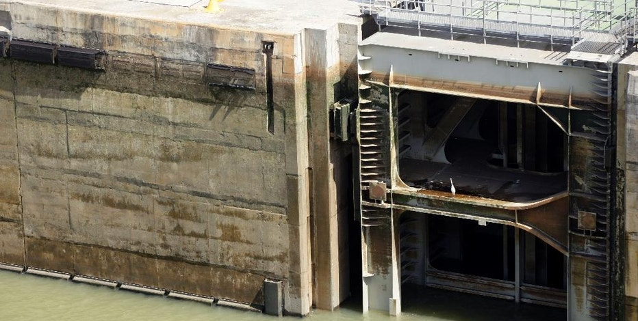 In this Jan. 16, 2017 photo, a heron rests on a lock gate near protective bumpers, top left, torn by passing ships in the Cocoli Locks of the Panama Canal, Panama. According to the Panama Canal authority, between June and January there were 15 incidents that resulted in damage to the locks or ships, or about 2 percent of the 700 total transits. (AP Photo/Arnulfo Franco)
