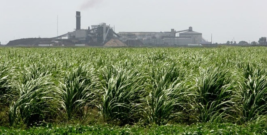 Sugar producers skeptical of deal with Mexico
