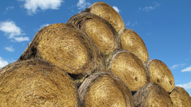 Farmers donating hay to Northern Plains ranchers amid drought