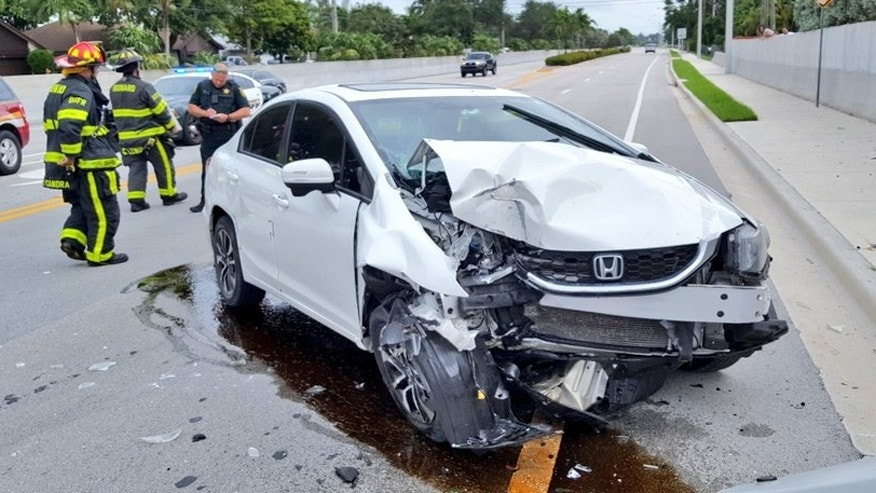 It wasn\'t \'itsy bitsy,\' but spider causes Florida car crash | Fox News
