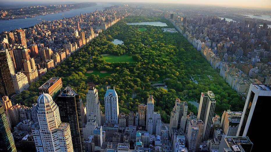 New York City Mayor Plans To Ban Cars On Central Park