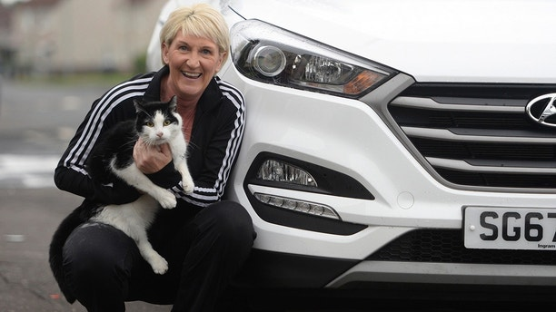 Sharon Stirling and cat Jacob,6, from Kilmarnock, who survived despite spending six days in the grill of a Hyundai car and making an 80 mile round trip.  A miracle cat has survived after being trapped in a car grill for nine days and driven around 80 miles.  See CENTRE PRESS story CPCAT.  Sharon Stirling's beloved moggy Jacob escaped the traumatic ordeal with just a bruised nose -- despite being trapped without food or water for nine days.  The 49-year-old was devastated after thinking she had lost her cat Jacob -- who she says never leaves home -- and even started making posters to try and find him.  But little did she know the seven-year-old black and white cat had been stuck in the grill of her dad's car the whole time.  Sharon, who lives in Kilmarnock, East Ayrshire had swapped cars with her dad Alex, 75 for the day on July 23 after he had a hernia op and couldn't drive.  She says Jacob must have jumped into the grill of her dad's car before she took it to work the following day and then stayed in there for nine days.
