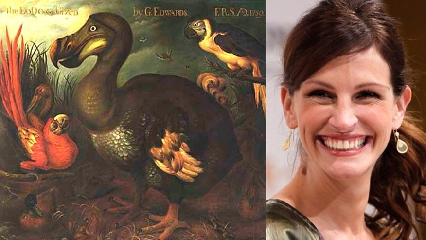 A dodo bird, and Julia Roberts. (Smithsonian/Reuters)