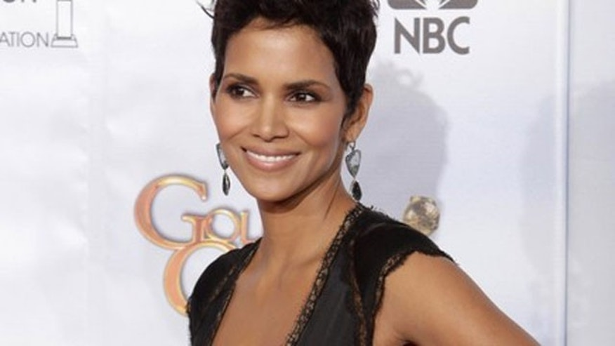 Halle Berry may have a new man in her life.