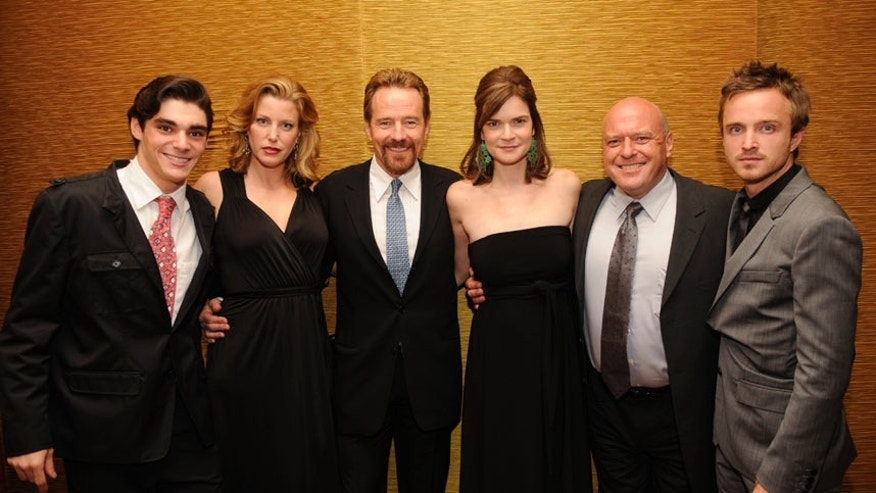 """Breaking Bad"" cast members R.J. Mitte (L-R), Anna Gunn, Bryan Cranston, Betsy Brandt, Dean Norris and Aaron Paul attend the 25th Annual Television Critics Association Awards in Pasadena, California August 1, 2009. REUTERS/Phil McCarten (UNITED STATES ENTERTAINMENT) - RTR26C16"