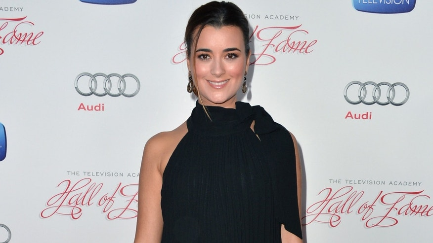Cote de Pablo attends the Academy of Television Arts & Sciences' 22nd Annual Hall of Fame Induction Gala on March 11, 2013 in Beverly Hills, California.