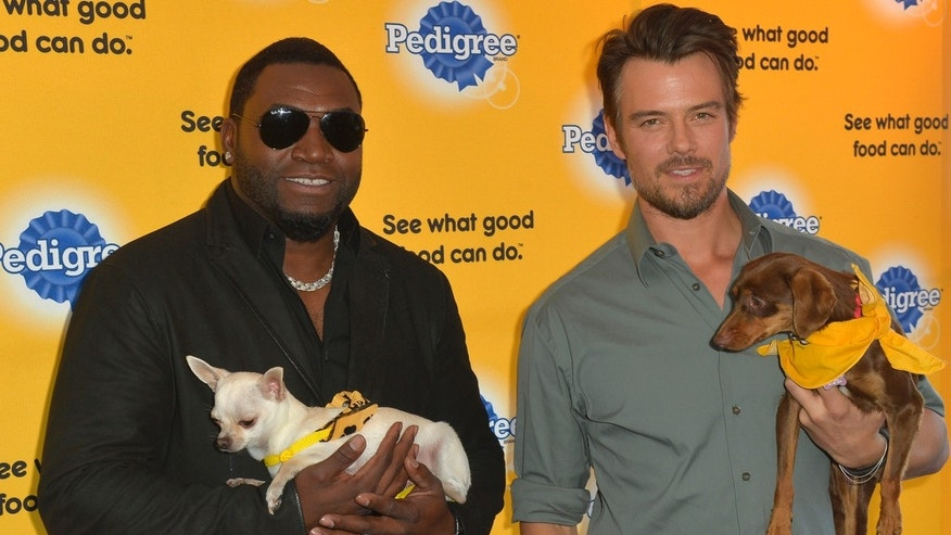 "Dog lovers David Ortiz and Josh Duhamel kick-off the PEDIGREE¨ Brand ""See what good food can do"" campaign at the 2014 Sundance Film Festival Monday Jan. 20, 2014, in Park City, Utah."