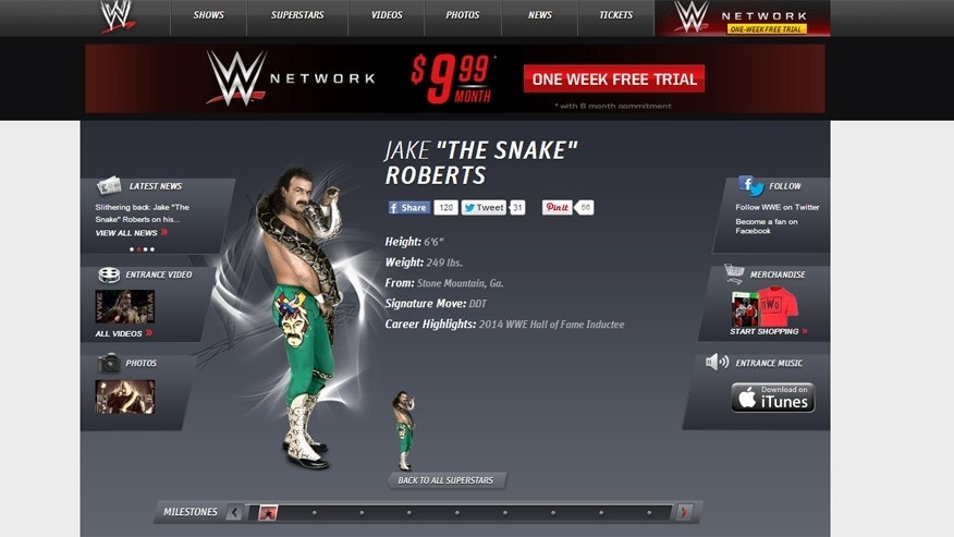 "Jake ""The Snake"" Roberts as seen on the official WWE website."