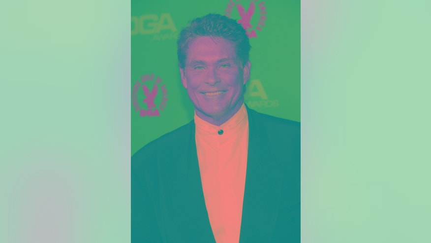 February 2, 2013. David Hasselhoff attends the 65th annual Directors Guild of America Awards in Los Angeles, California.