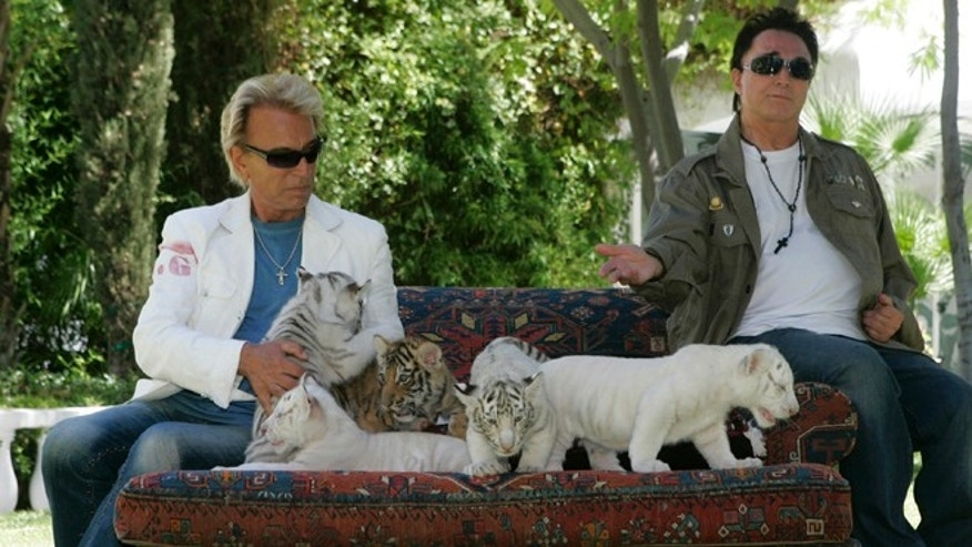 Illusionists Siegfried Fischbacher, left, and Roy Horn display 6-week-old tiger cubs at their home in Las Vegas, Nevada June 12, 2008.