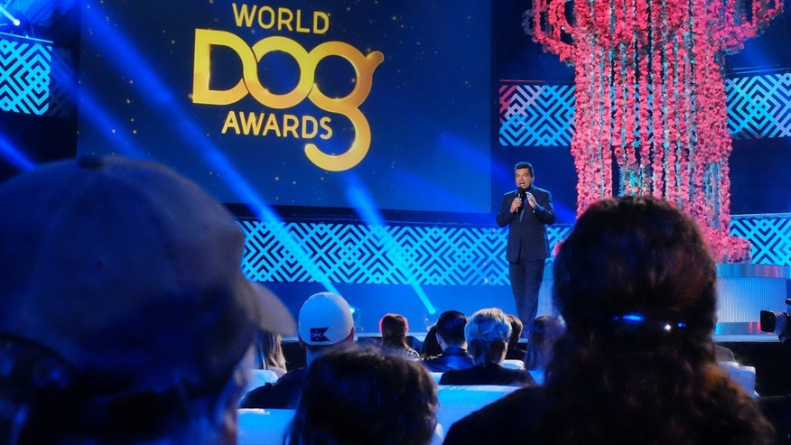This Saturday, Jan. 10, 2015 photo  George Lopez takes to the stage during the taping of the 2015 World Dog Awards at the Barker Hanger in Santa Monica, Calif. The inaugural World Dog Awards will be hosted by comic George Lopez and air Jan. 15 on The CW Network. Canine winners, along with a few humans and a cat, will be presented with golden fire hydrant statuettes. (AP Photo/Richard Vogel)
