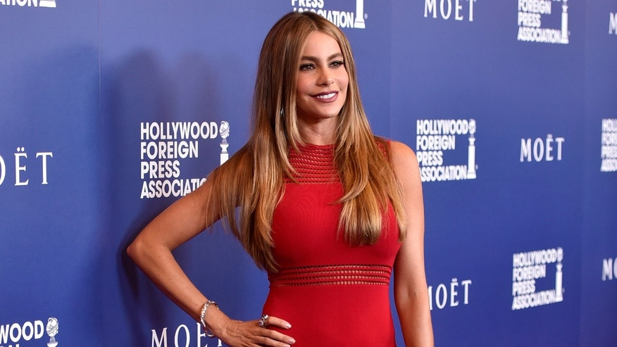 Sofia Vergara attends the Hollywood Foreign Press Association's Grants Banquet on August 14, 2014 in Beverly Hills.