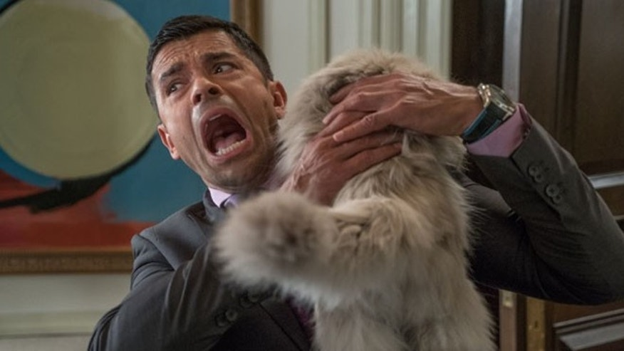 "Mark Consuelos stars in EuropaCorp's ""NINE LIVES"""