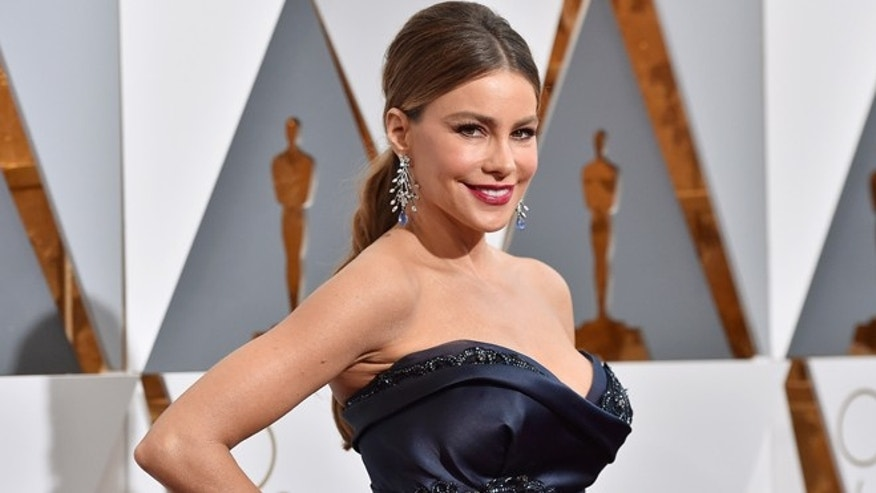 HOLLYWOOD, CA - FEBRUARY 28:  Actress Sofia Vergara attends the 88th Annual Academy Awards at Hollywood & Highland Center on February 28, 2016 in Hollywood, California.  (Photo by Kevork Djansezian/Getty Images)