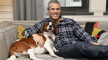 Andy Cohen insists that his rescue dog, Wacha, melted his ice cold heart when he adopted him. Along with a $20,000 donation to North Shore Animal League America's Mutt-i-grees program, Purina ONE is partnering with Mutt-i-grees and Andy Cohen as part of its ONE Difference Campaign, which focuses on nourishing the lives of both students and shelter dogs across the country. (Amy Sussman/AP Images for Purina ONE)