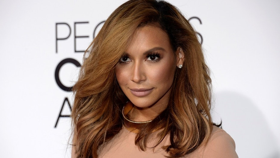 Actress Naya Rivera charged with domestic battery