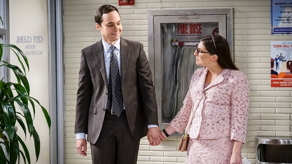 'Big Bang Theory' Season 11, Episode 10