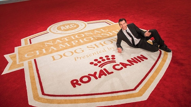 - Orlando, FL - 12/17/2017 - Jerry O`Connell serves as this year`s celebrity host for the AKC National Championship Presented by Royal Canin, premiering on Animal Planet on New Years Day, Monday, January 1, 2018 at 7PM ET.