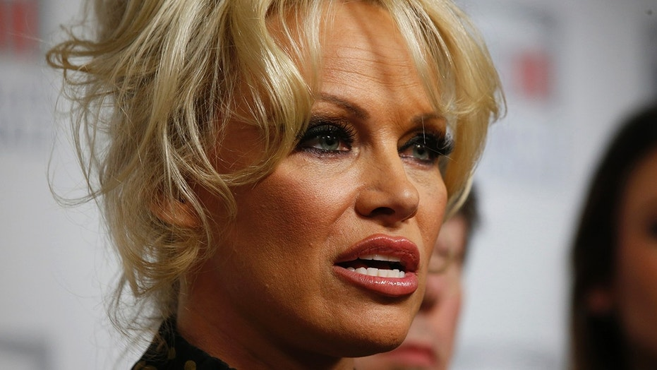 Pamela Anderson released a statement about the public fight between her ex, Tommy Lee, and their son Brandon Lee.