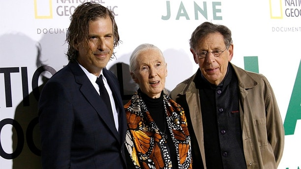 "British primatologist Jane Goodall poses with director Brett Morgen (L) and composer Philip Glass at the premiere for the documentary ""Jane"" in Los Angeles, California, U.S., October 9, 2017. REUTERS/Mario Anzuoni - RC1DA2CB7A60"