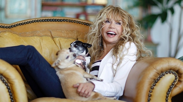 """Actress Dyan Cannon poses for a portrait with her Chihuahuas Matilda (L) and J.C. at her home in West Hollywood, California October 12, 2011. It was a fairy tale romance that turned in to a stormy marriage, and now Dyan Cannon has chronicled her relationship with Hollywood legend Cary Grant in her new book, """"Dear Cary: My Life with Cary Grant."""" With an age difference of over 30 years, the duo had a  magical courtship in the 1960s that eventually gave way to the dark side of Grant after they were engaged. Following three years of marriage and not long after the birth of their daughter Jennifer, the couple divorced and Cannon suffered a nervous breakdown. Picture taken October 12, 2011.     REUTERS/Mario Anzuoni (UNITED STATES - Tags: ENTERTAINMENT PROFILE ANIMALS) - GM1E7AF0G9501"""