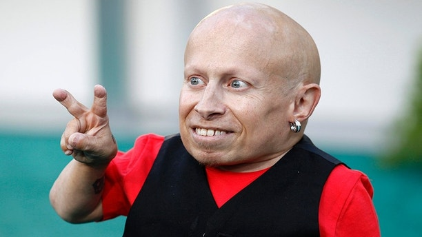verne troyer - photo #16
