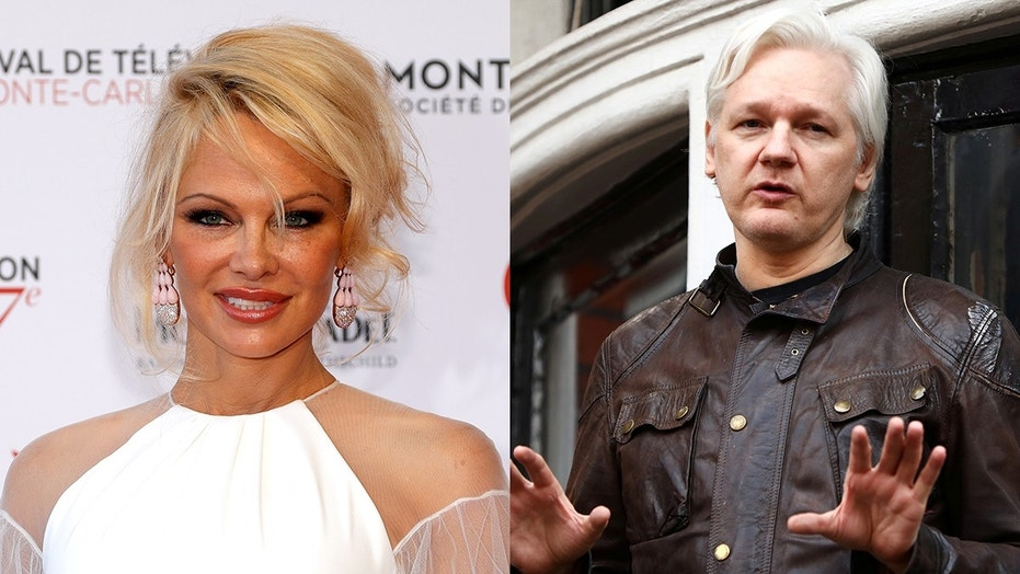 Pamela Anderson has been making regular visits to see Julian Assange.