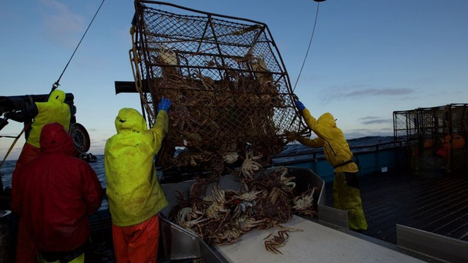 The captains struggled with injuries and illness on Season 14, Episode 4 of 'Deadliest Catch.'