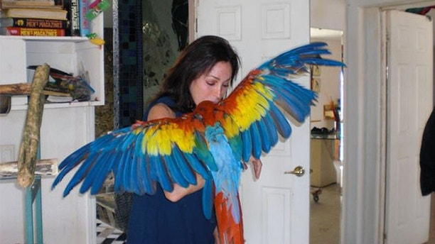 Here is Celebrity Big Brother star Heidi Fleiss with the exotic birds she misses so much she is threatening to quit the show.