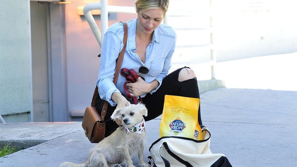 - Los Angeles, CA - 07/25/2018 - Actress Brittany Snow stocks up on NatureÕs Recipe premium dog food after taking her dog Billie on a wag-filled summer road trip. 