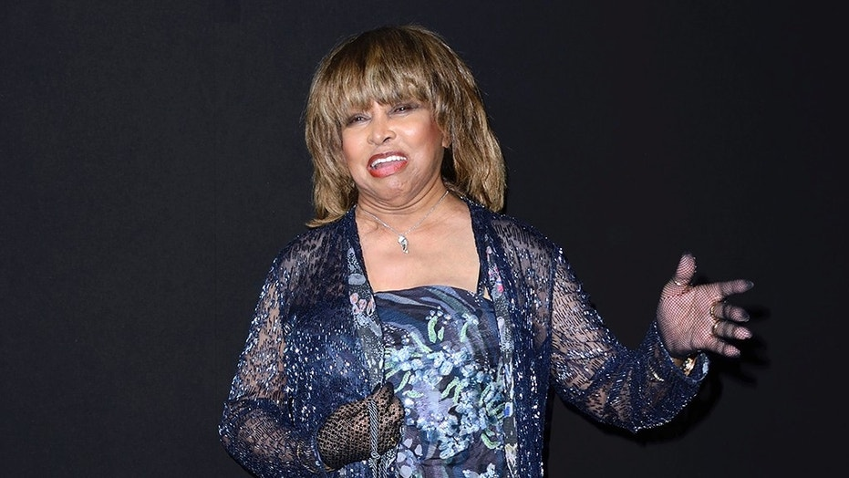 Tina Turner shares 'final goodbye' to late son who died this month