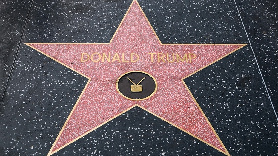 Several fake stars bearing Donald Trump's name reportedly dotted empty spaces on the Hollywood Walk of Fame on Thursday.