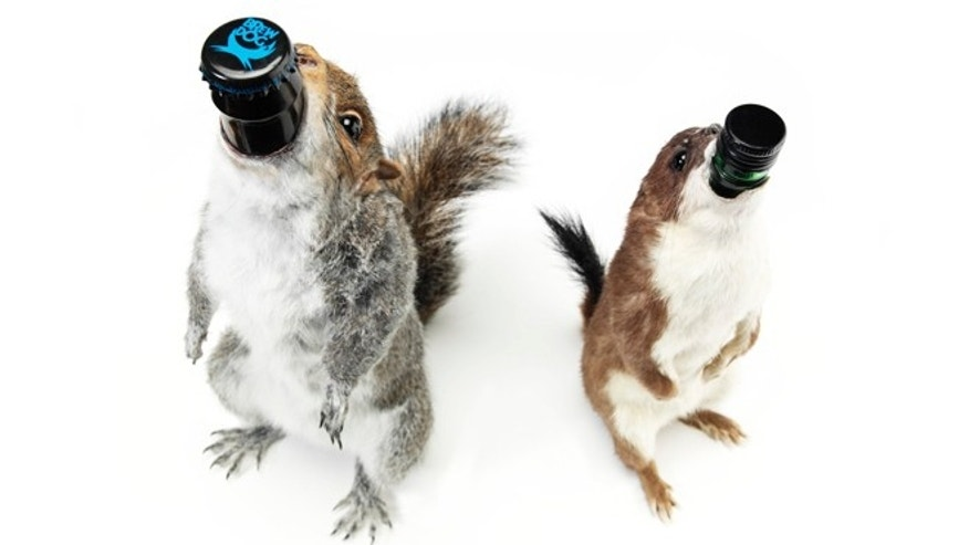 Not only is Scottish brewery BrewDog making some of the highest alcohol by volume beers in the world, they also use just about the most unusual vessels in which to hold them, like this taxidermy squirrel holding there extreme brew, The End of History.