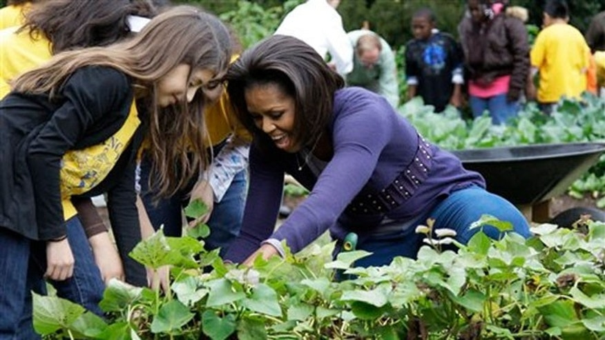 Michelle Obama in the White House kitchen garden