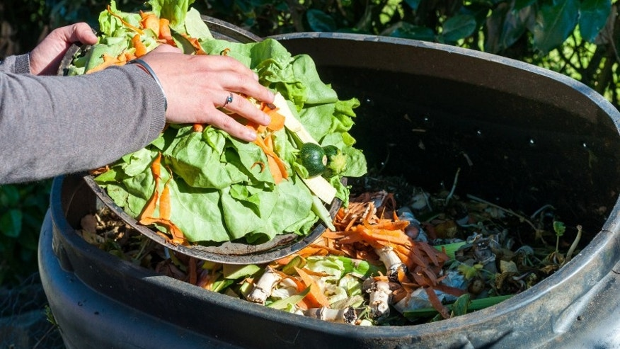Americans throw out 30 percent of their food.