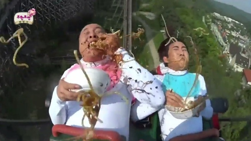 Noodles and roller coasters, an unlikely and unfortunate pairing.