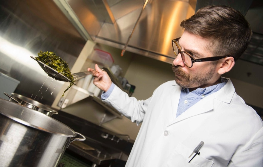 Jason Ball, a research chef at the Food Innovation Center in Portland, Oregon prepares dishes made with dulse to be taste-tested by the general public. Dulse is a type of seaweed variety currently being grown and researched at the Hattfield Marine Science Center in Newport, Oregon by Chris Langdon. The FIC, Hattfield, and the Oregon Business School with Chuck Toombs are working together to bring OSU grown dulse to the market.