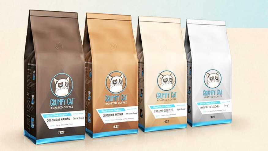 Grumpy Cat does not approve of these coffee beans.