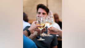 A photo of friends toasting wine. Close-up of hands holding wine glasses. Group of people enjoying party in restaurant.