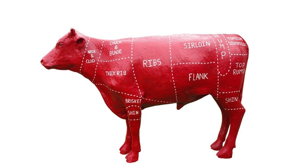 A plastic model of a cow showing names for the cuts of beef inscribed in their positions, isolated on white.