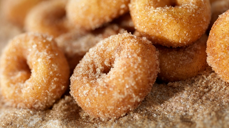 Cinnamon and Sugar Mini Donuts-Photographed on Hasselblad H3D2-39mb Camera
