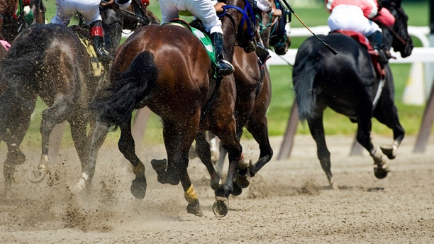 Horse racing on a dirt track as they head down the front stretch to the finish line.