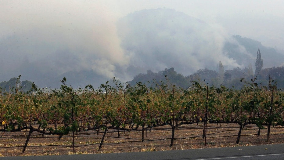 Plumes of smoke rise from a mountain behind a vineyard at Chateau St. Jean in Kenwood, Calif.