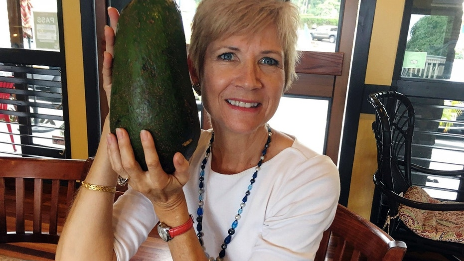 One woman found a five pound, 3.6 ounce avocado on a walk in her Hawaii town.