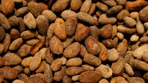 cocoa beans reuters