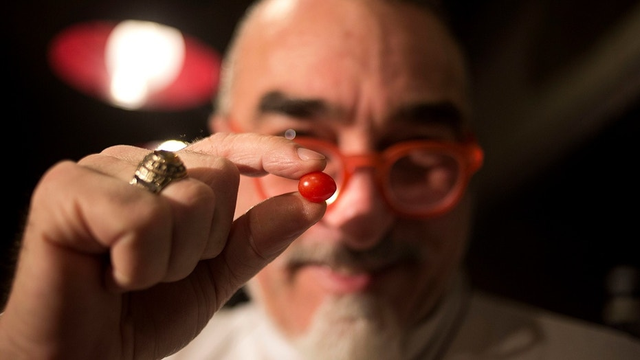 """An Israeli company created the """"drop tomato,"""" which they say might be the smallest cherry tomato in the world."""