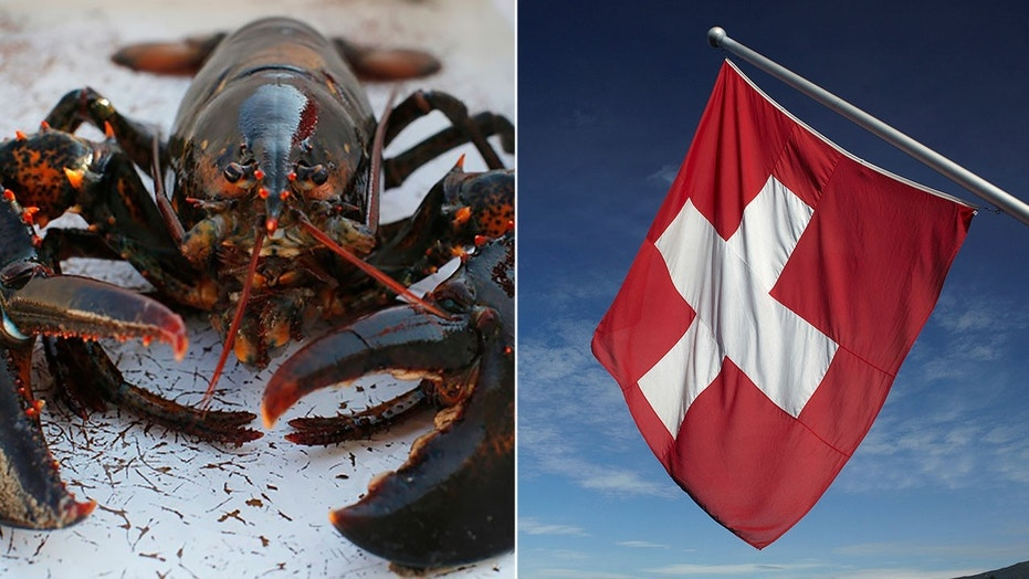 The Swiss government ruled that lobsters cannot be thrown into boiling water while alive