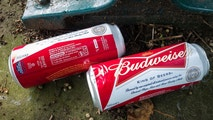 budweiser cans istock