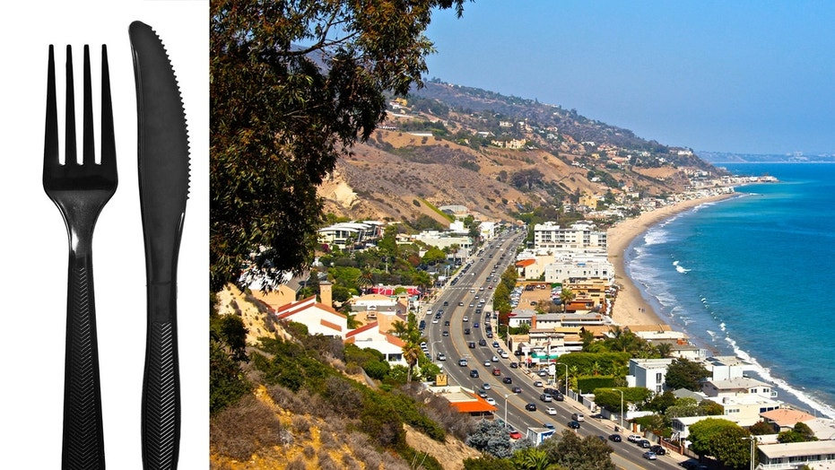 The Malibu City Council voted in support of the ban Monday over concerns about the environment and dirtying its famous beaches.